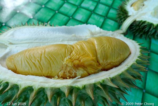 ho chiak durian season part 1 singapore. Black Bedroom Furniture Sets. Home Design Ideas